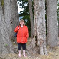 Moira Davidson's picture