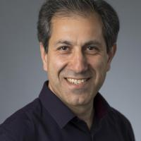 Javad Chamanara's picture